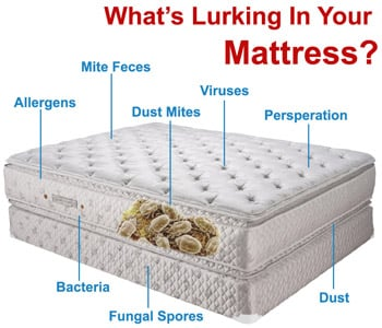 Mattress Cleaning Services Singapore